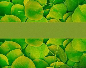 Plantilla PowerPoint de Naturaleza PPT Template