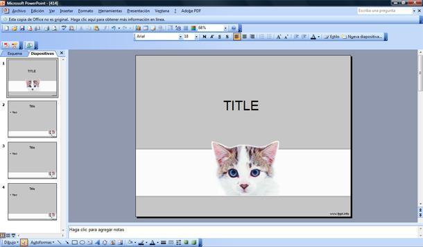 gato plantilla powerpoint